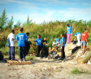 Celebrating Our Beaches with a Coastal Cleanup