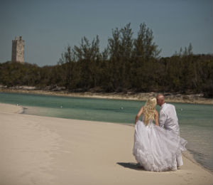A Dolphin Swim Wedding Day