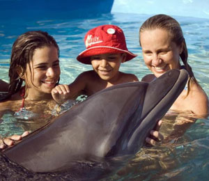 A Bahamas Dolphin Encounter Is A Blast For The Whole Family