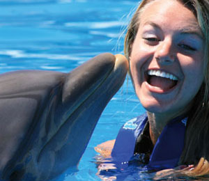 Your Teens Will Love A Swimming With Dolphins